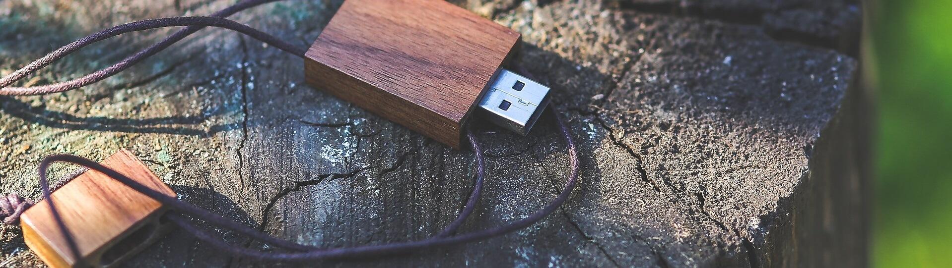 USB Sticks aus Holz und Bambus