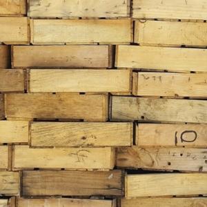 Bambus Boxen