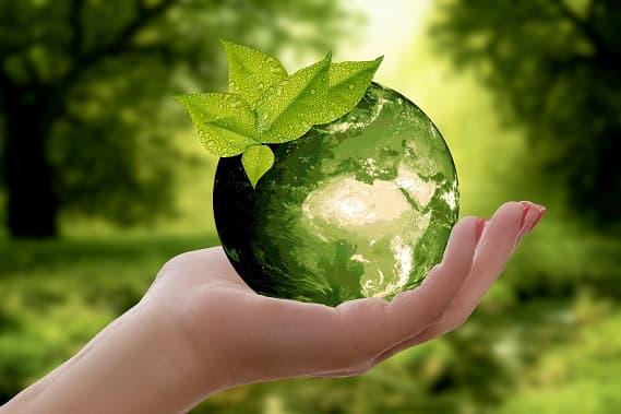 Beitragsbild - Tipps für ein nachhaltig leben