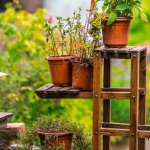 Bambus Blumenhocker & Pflanzregale
