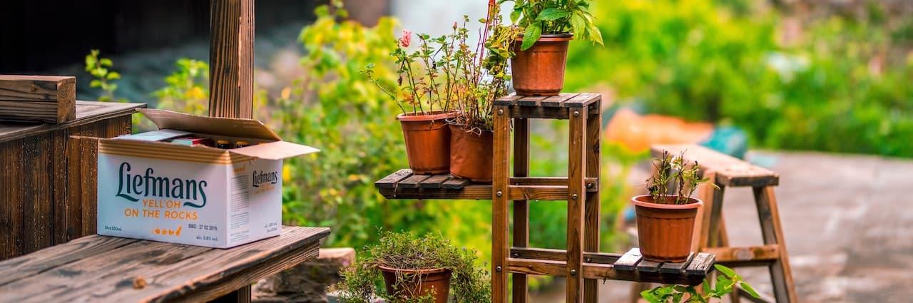 Bambus Blumenhocker Teaserbild Kategorieseite